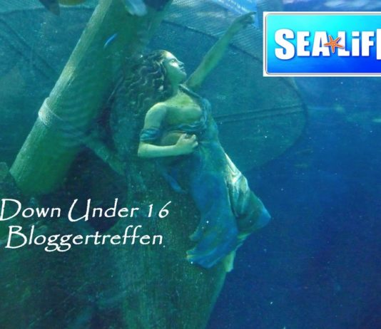 Down under Bloggertreffen