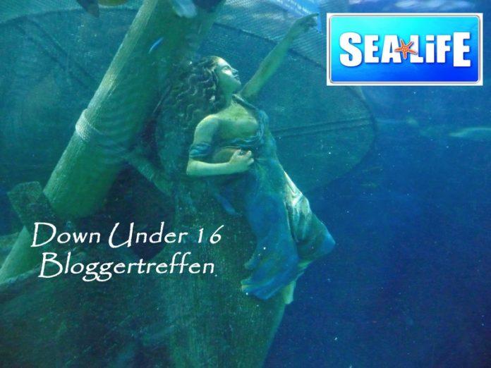 Down under Bloggertreffen