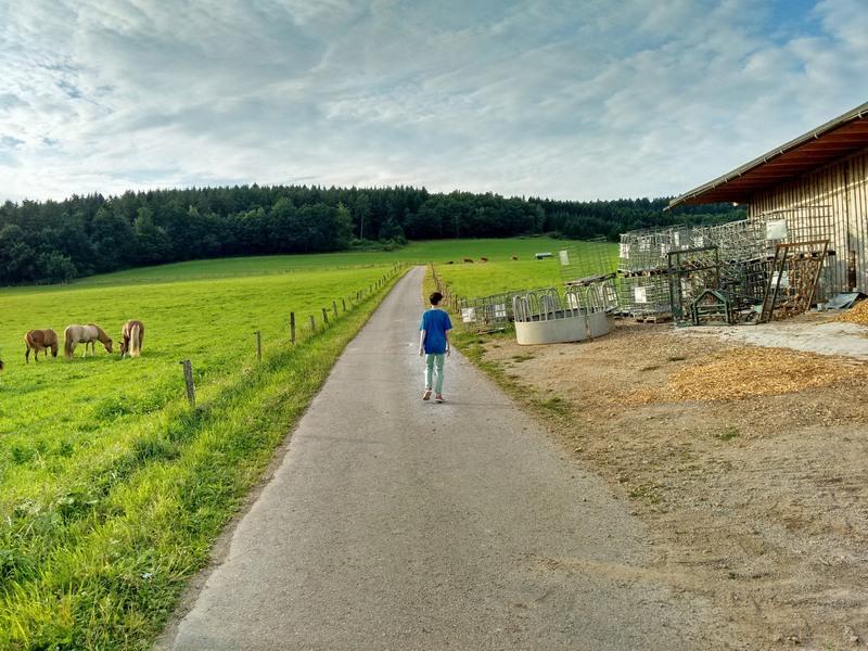 Quinkenhof Erinnerungen