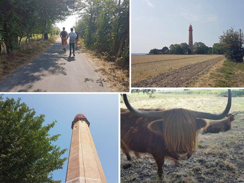Urlaub Ostsee Fehmarn