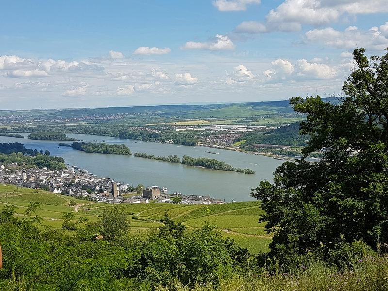 Schiffstour Mittelrhein Rüdesheim